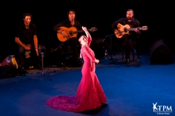Nuits Flamencas à Châteauvallon