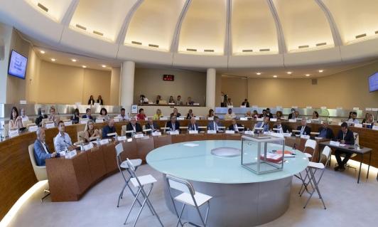 Les 15 vice-présidents de TPM