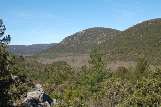 Forêt domaniale des Morières