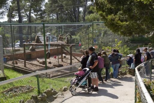 Toulon - Zoo du Mont Faron