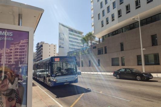 Bus - réseau Mistral