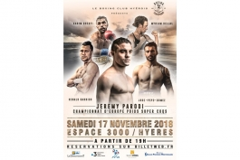 Championnat d'Europe de boxe