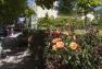 Bastide Jardin remarquable de Beaudouvin