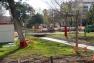 Installation du chantier du jardin Alexandre 1er